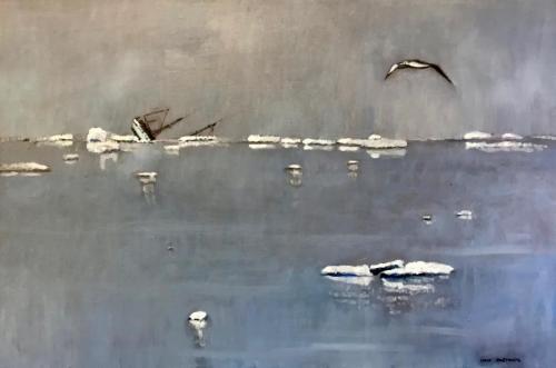 Albatross Neko Harbour