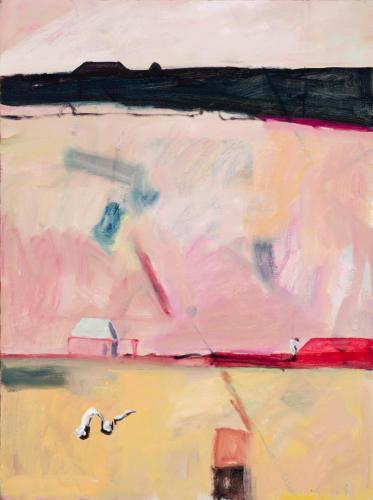 DB7 (Red Dump) 2013 oil on linen 102 x 76.5 cm