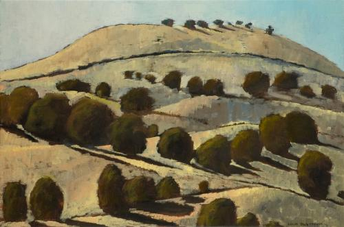 """Parwan Hillside"" 2007, oil on linen, 51 x 76 cm. [2011 GrowWest Landcare Prize] [Private Collection]"