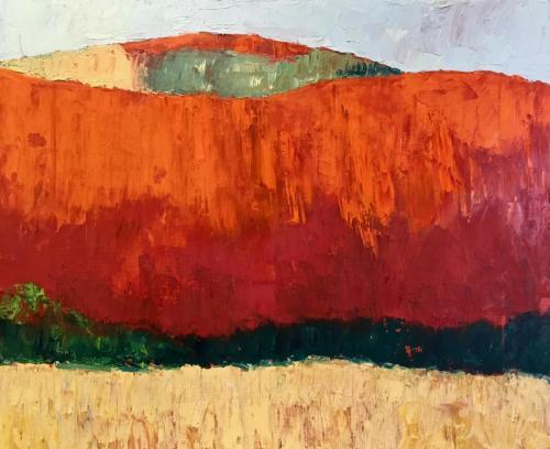 Orange Cliff 2019 oil on linen 61 x 51 cm